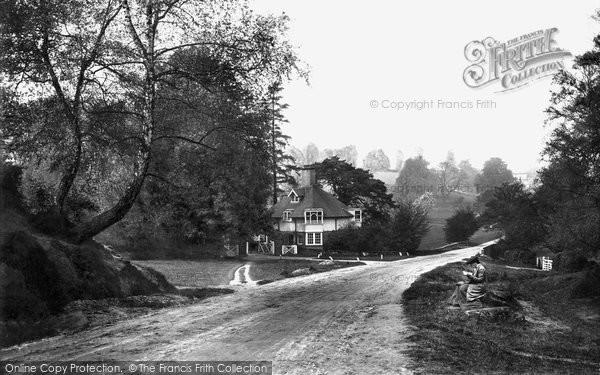 Photo of Westcott, Entrance To The Rookery 1906