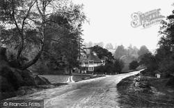 Westcott, Entrance To The Rookery 1906