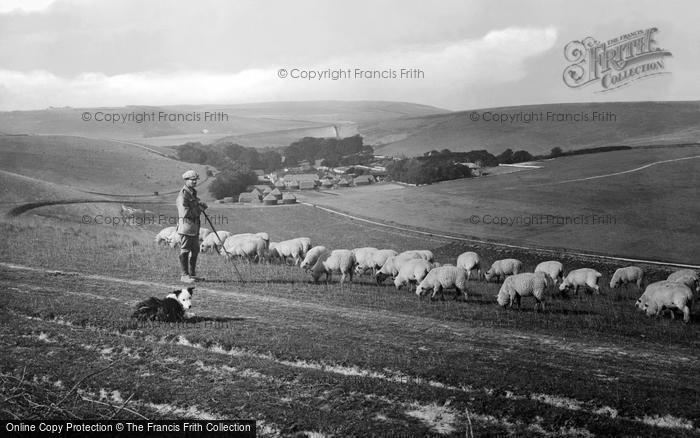 Westdean, Shepherd With His Flock 1922