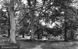Westerham, Squerrys Wood 1925