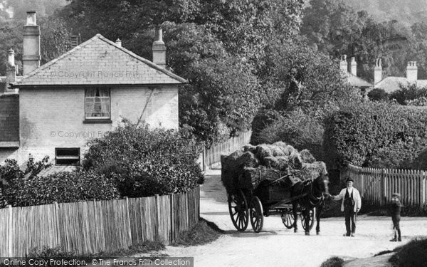West Humble, Horse and Cart 1906