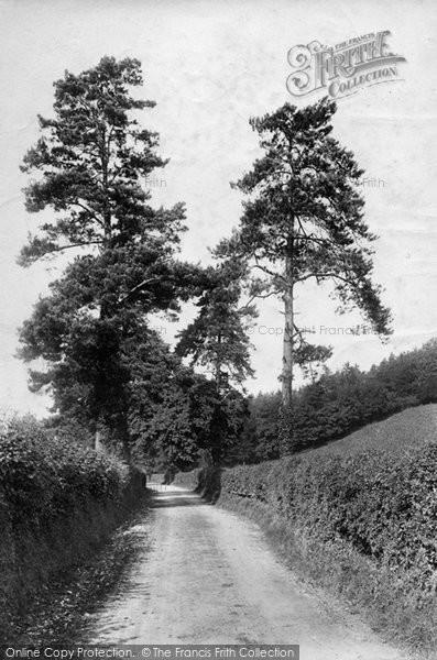 Photo of Westhumble, Lane Scene 1906