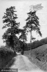 Westhumble, Lane Scene 1906