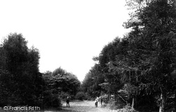 Weston-Super-Mare, In The Woods 1887