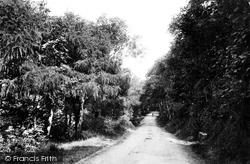 Weston-Super-Mare, On Kewstoke Road 1887