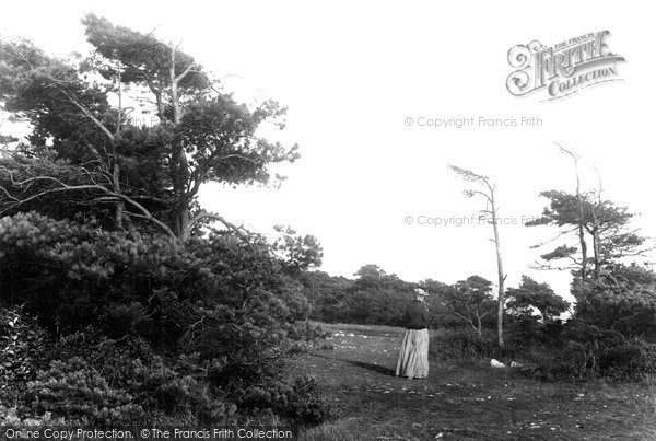 Photo of Weston Super Mare, View Of The Encampment 1890