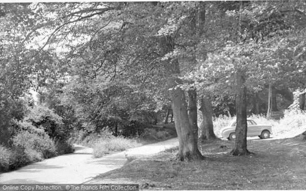 Photo of Westwell, Pilgrims Way c.1960