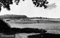 Westwell, The Downs c.1960