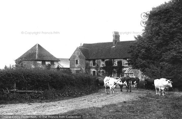 Photo of Weybridge, Ham Farm 1904