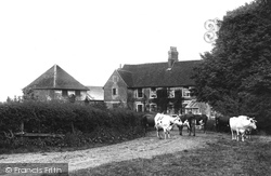 Weybridge, Ham Farm 1904