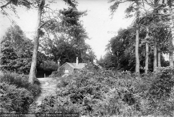 Photo of Weybridge, The Heath 1904