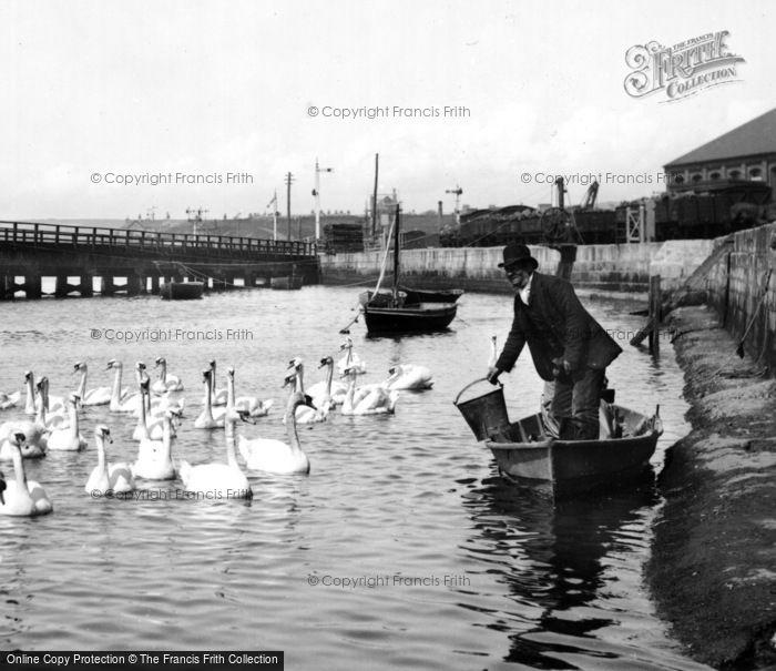 Photo of Weymouth, Feeding The Swans 1890