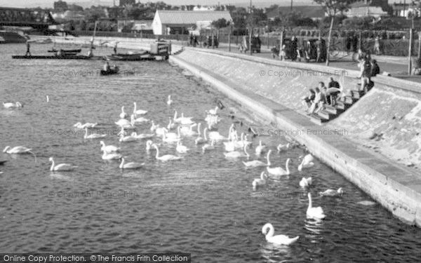 Photo of Weymouth, Radipole Lake c.1955
