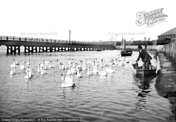 Photo of Weymouth, The Swannery, Radipole Lake 1890