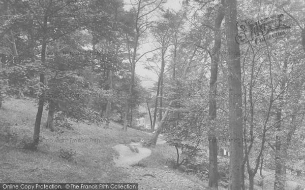 Photo of Whalley, The Nab Woods 1921