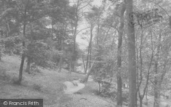 Whalley, The Nab Woods 1921