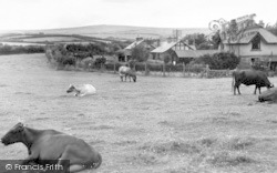 Wheddon Cross, And Dunkery Beacon c.1950