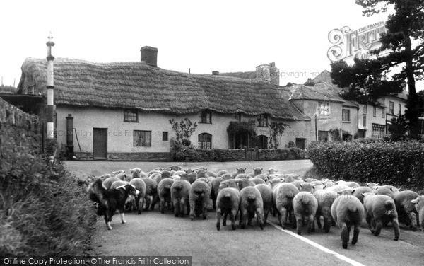 Photo of Wheddon Cross, Market Day c.1950