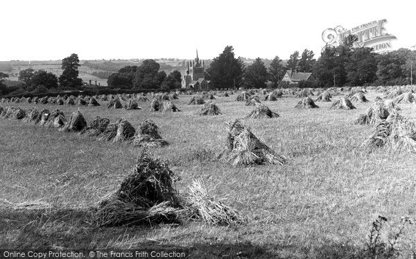 Photo of Whippingham, Harvest Time c.1955