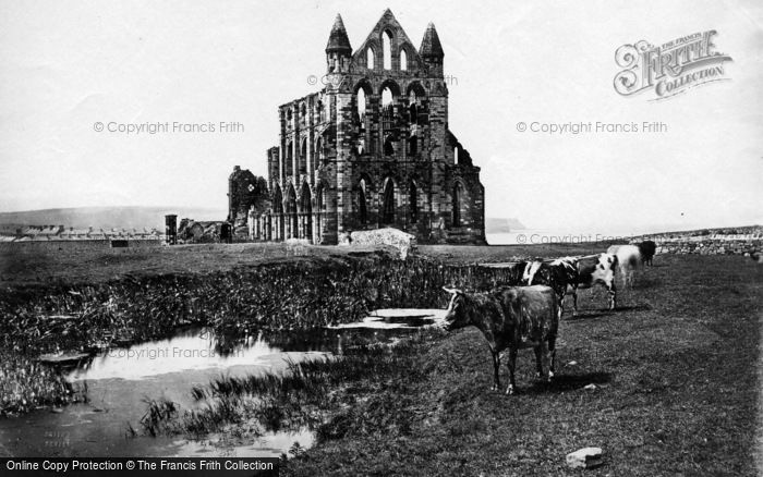 Photo of Whitby, Abbey c.1861