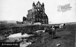 Whitby, Abbey c.1861