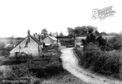 Whitchurch Canonicorum, The Village 1903