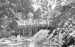 White Colne, River Colne c.1955