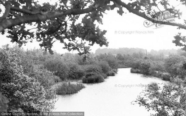 Photo of White Colne, The Lake c.1955
