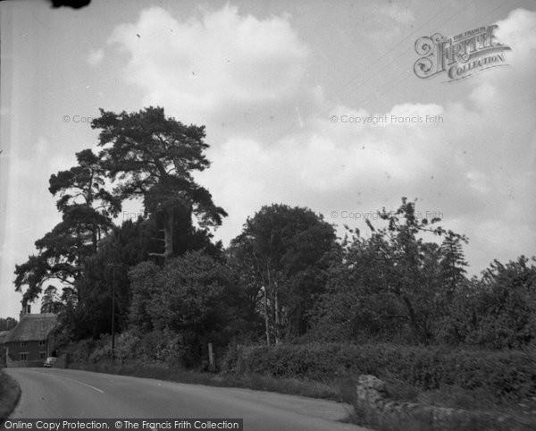 Photo of White Lackington, 1953