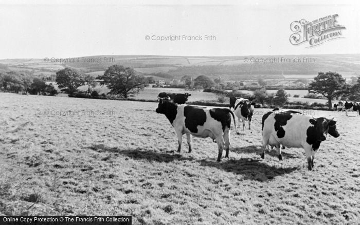 Photo of Whitland, General View c.1955