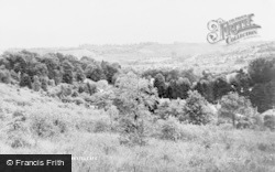 Kenley Common c.1955, Whyteleafe