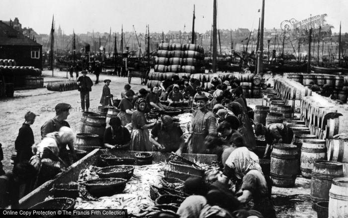 Photo of Wick, Workers Gutting Herrings 1914