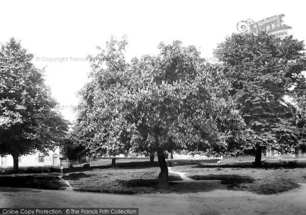 Photo of Wickhambreaux, The Green 1903