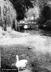 The River c.1960, Wickhambreaux