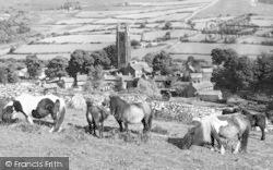 Widecombe In The Moor, Ponies c.1960
