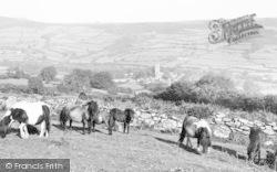 Ponies c.1960, Widecombe In The Moor