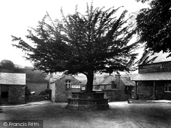 Widecombe In The Moor, The Village 1922