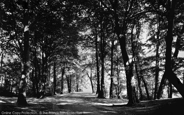 Photo of Wigan, Entrance To Plantation c.1955