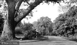 Station Road c.1955, Wilburton