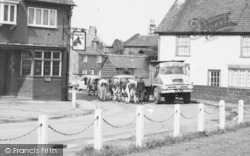 Cows In The Road c.1965, Willaston