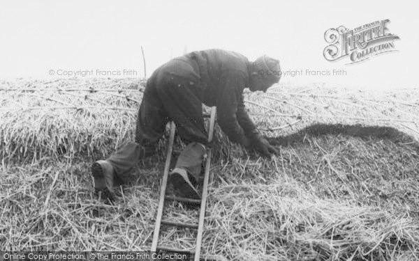 Photo of Wimbish, A Thatcher At Work c.1960