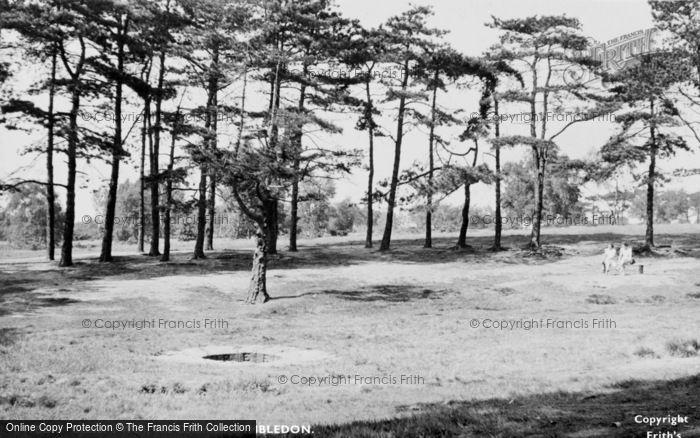 Photo of Wimbledon, Caesar's Well, The Common c.1955