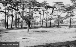 Caesar's Well, The Common c.1955, Wimbledon