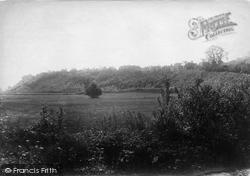 1890, Winchelsea