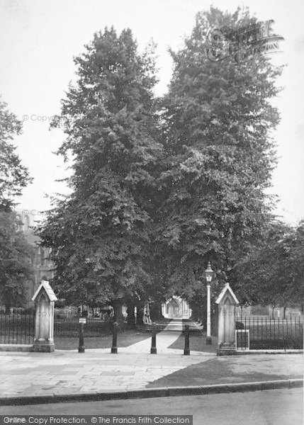 Photo of Winchester, Cathedral, Lime Tree Avenue 1911