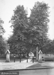Winchester, Cathedral, Lime Tree Avenue 1911