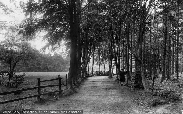 Photo of Windlesham, Beech Walk 1909