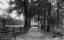 Windlesham, Beech Walk 1909