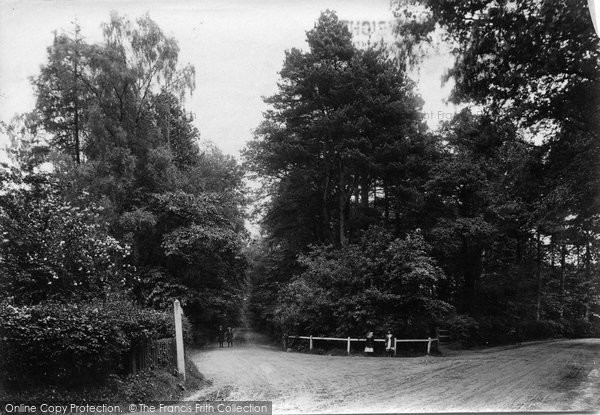 Windlesham, Westwood Road 1909