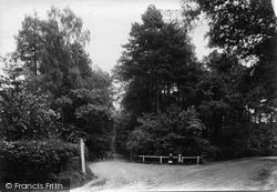 Windlesham, Westwood Road 1909